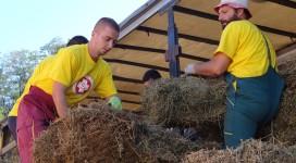 volonteri - dar zajednici